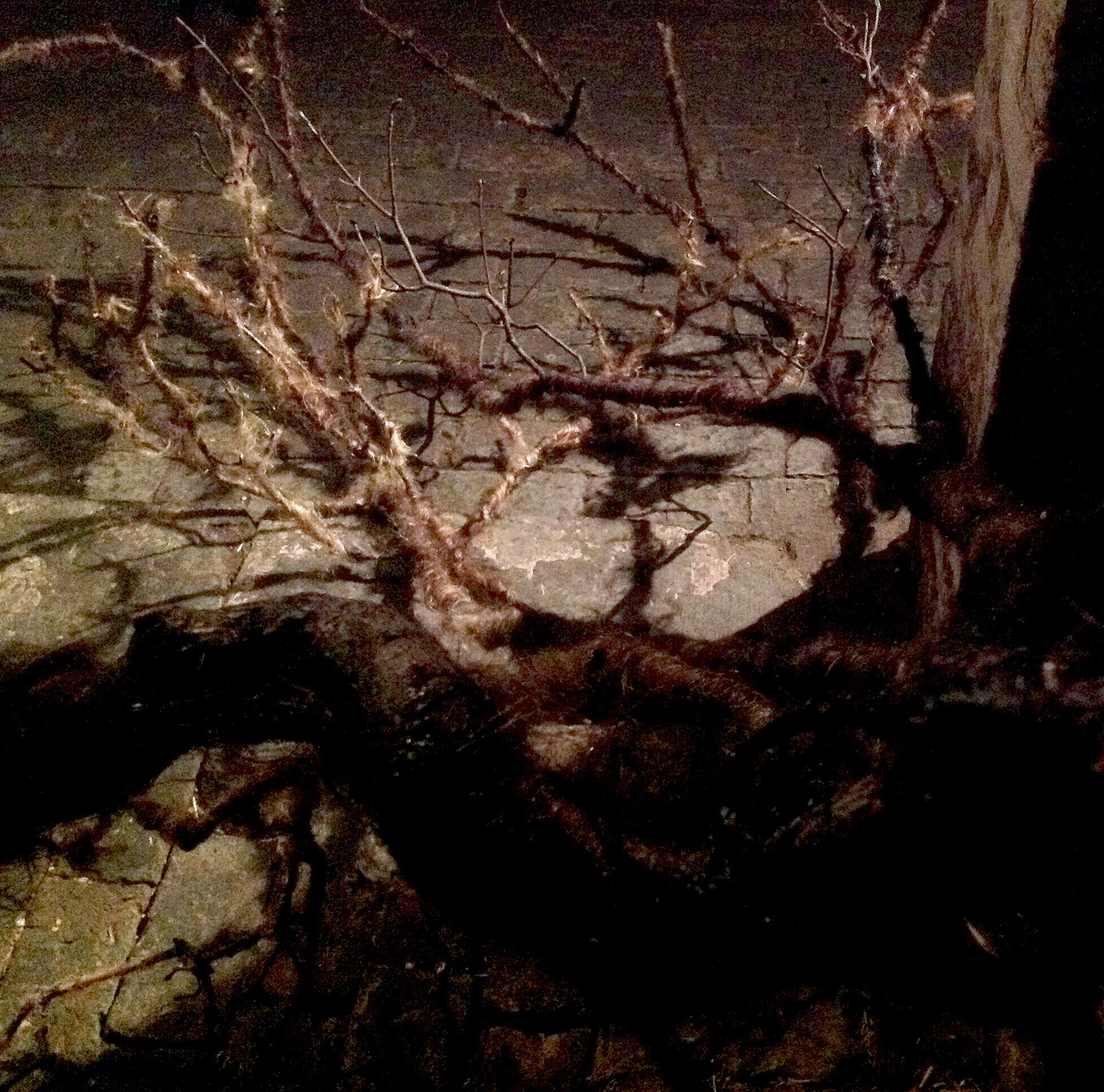 dark-branch